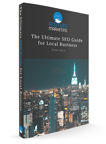 Local SEO eBook Cover for Business