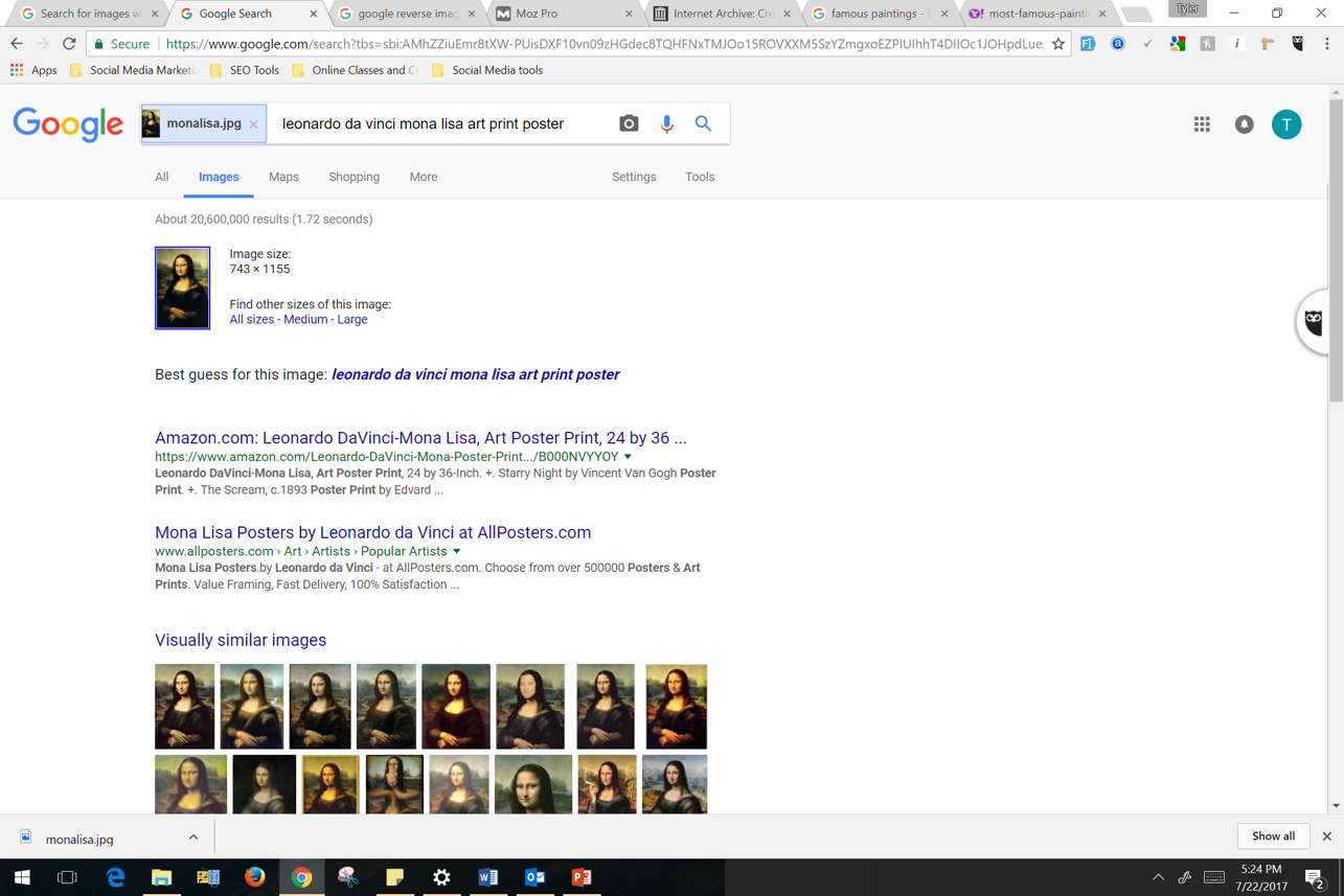 Mona Lisa Picture Example Google